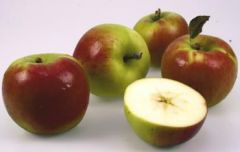 Jablko Paula Red